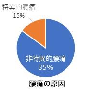 腰痛の原因円グラフ